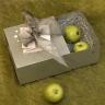 srebrne pudełko z karnetem